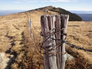 wood and barbwire fence on a rural area